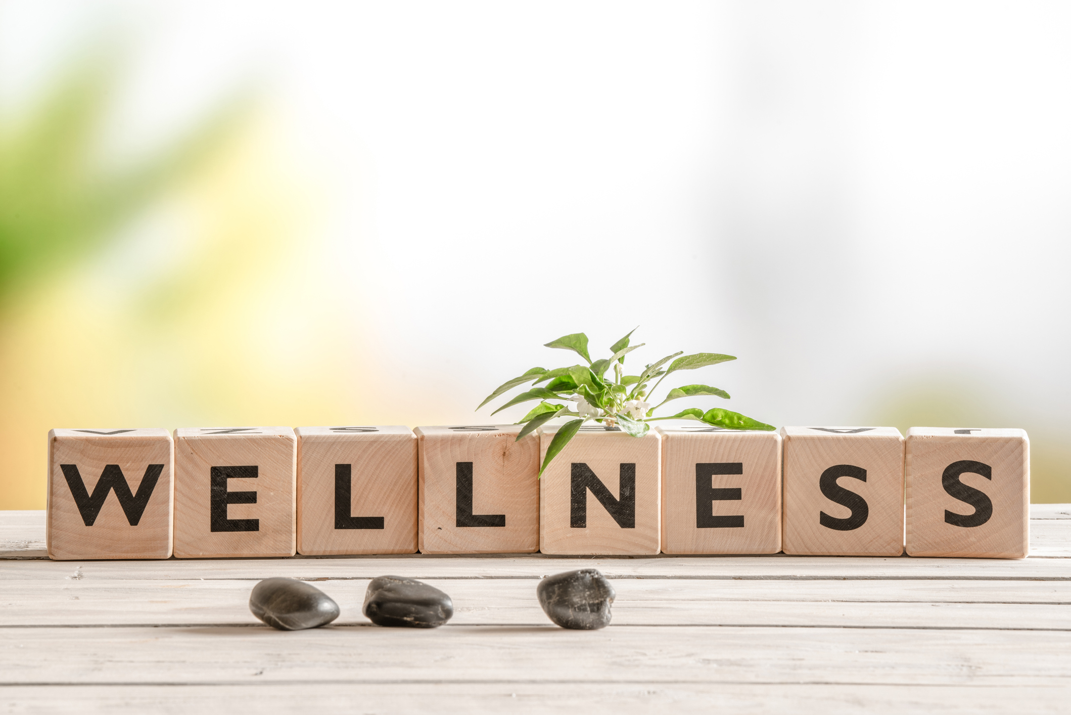 Industry insights: wellness, brought to you by Natwest